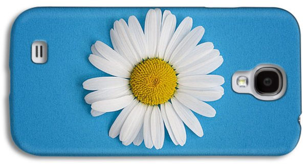 Oxeye Daisy Square Blue Galaxy S4 Case by Tim Gainey