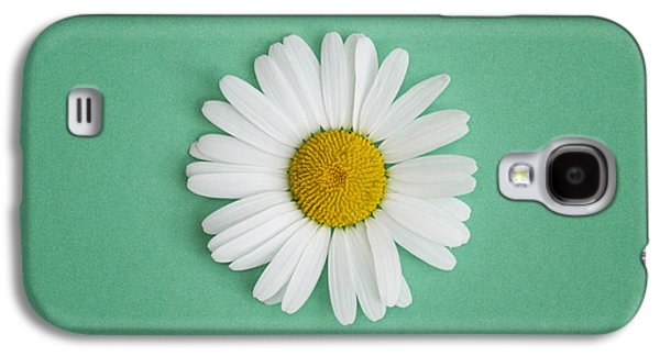 Oxeye Daisy Square Green Galaxy S4 Case by Tim Gainey