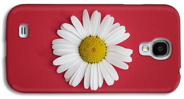 Oxeye Daisy Square Red Galaxy S4 Case by Tim Gainey