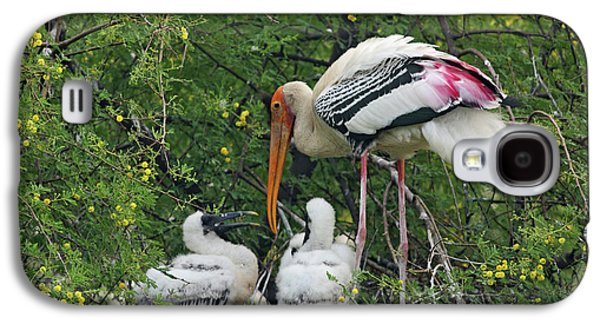 Painted Stork & Young Ones,keoladeo Galaxy S4 Case by Jagdeep Rajput