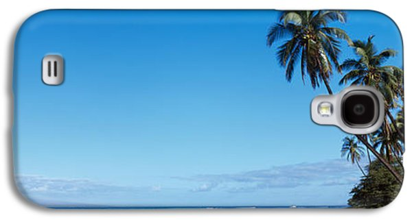 Palm Trees On The Coast, Lahaina, Maui Galaxy S4 Case