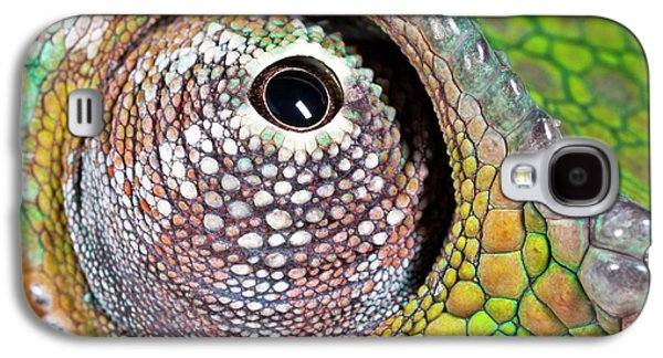 Panther Chameleon Eye Galaxy S4 Case