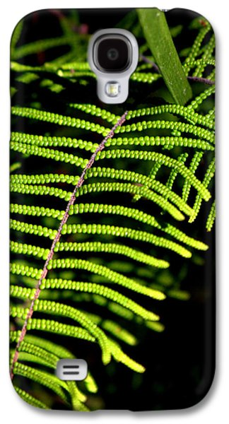Galaxy S4 Case featuring the photograph Pauched Coral Fern by Miroslava Jurcik