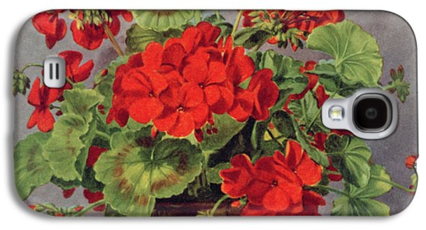 Geranium In An Earthenware Vase Galaxy S4 Case by Albert Williams