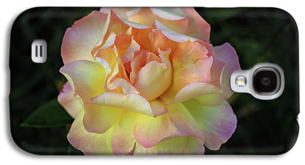 Peace Rose Galaxy S4 Case