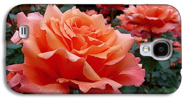 Peach Roses Galaxy S4 Case