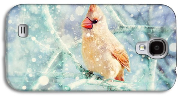 Peaches In The Snow Galaxy S4 Case by Amy Tyler