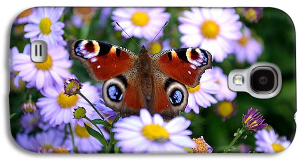 Peacock Butterfly Perched On The Daisies Galaxy S4 Case