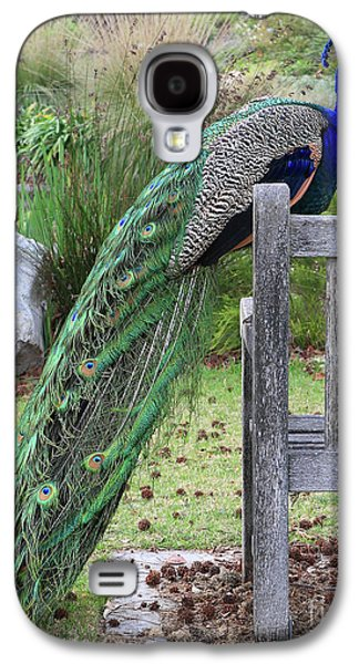 Peacock Galaxy S4 Case - Peacock by Nicholas Burningham