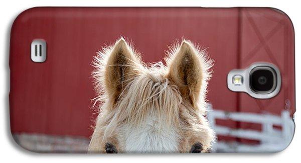 Peek A Boo Galaxy S4 Case by Courtney Webster
