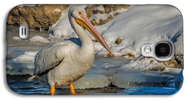 Pelican And Ice Galaxy S4 Case by Paul Freidlund