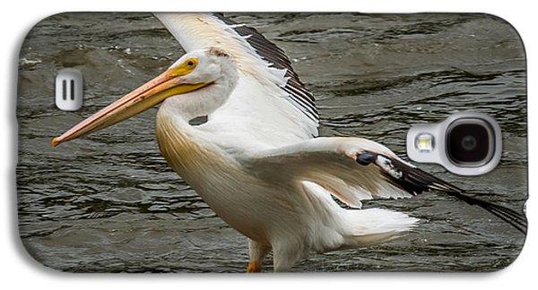 Pelican Landing Galaxy S4 Case by Paul Freidlund