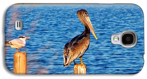 Pelican On A Pole Galaxy S4 Case