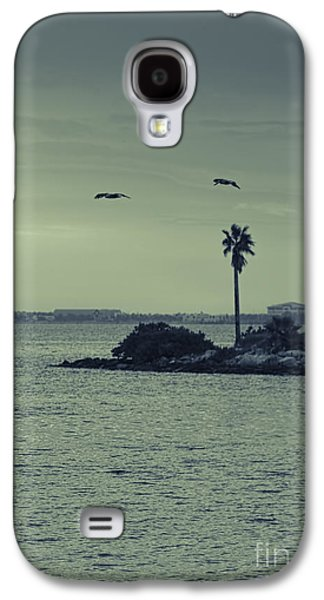 Pelicants And Palm Galaxy S4 Case by Marvin Spates