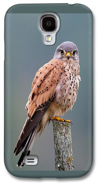 Perching Galaxy S4 Case by Torbjorn Swenelius