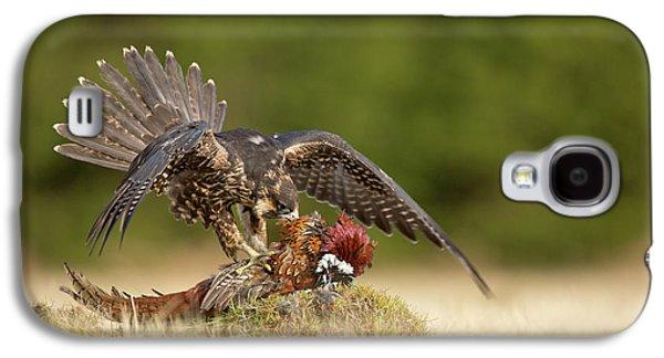 Falcon Galaxy S4 Case - Peregrine Falcon by Milan Zygmunt