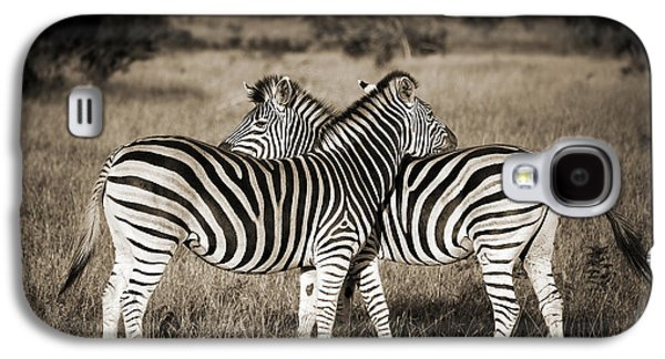 Perfect Zebras Galaxy S4 Case by Delphimages Photo Creations