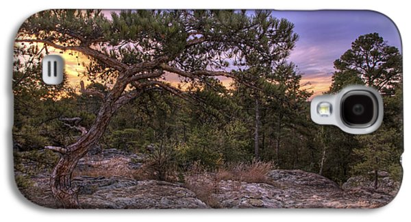 Petit Jean Mountain Bonsai Tree - Arkansas Galaxy S4 Case