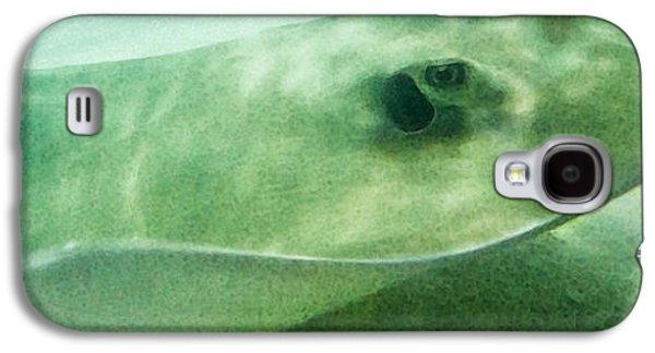 Phantom - Manta Ray Art By Sharon Cummings Galaxy S4 Case
