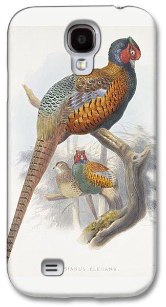 Phasianus Elegans Elegant Pheasant Galaxy S4 Case by Daniel Girard Elliot
