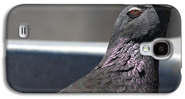 Pigeon In Ecstasy  Galaxy S4 Case
