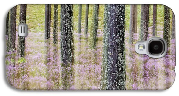 Pine Forest And Heather Cairngorms Np Galaxy S4 Case by Sebastian Kennerknecht