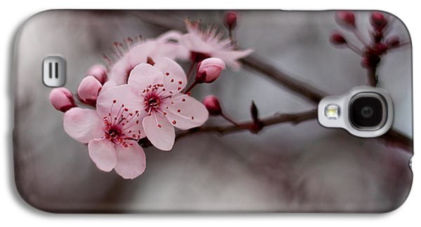 Pink Blossoms Galaxy S4 Case