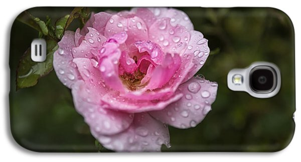 Pink Rose With Raindrops Galaxy S4 Case