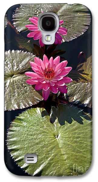 Pink Water Lily IIi Galaxy S4 Case
