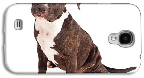 Pit Bull Puppy Black And White Galaxy S4 Case by Susan Schmitz