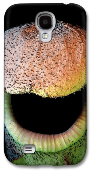 Pitcher Plant Trap Galaxy S4 Case by Stefan Diller
