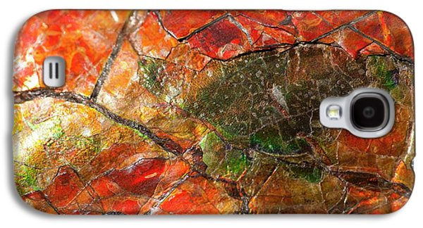 Placenticeras Ammonite Ammolite Gemstone Galaxy S4 Case