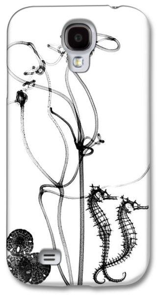Plant Tendrils And Seahorses Galaxy S4 Case by Albert Koetsier X-ray