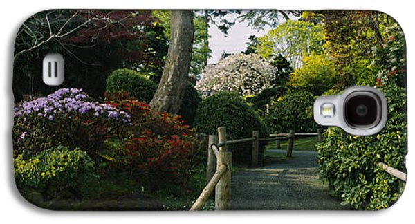 Plants In A Garden, Japanese Tea Galaxy S4 Case by Panoramic Images