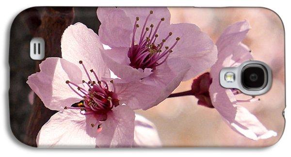 Plum Blossoms Galaxy S4 Case
