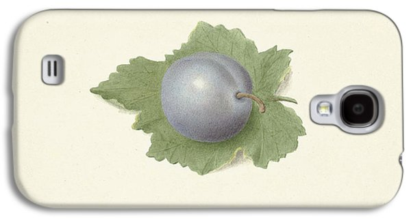 Plum On A Leaf, Elisabeth Geertruida Van De Kasteele Galaxy S4 Case by Quint Lox