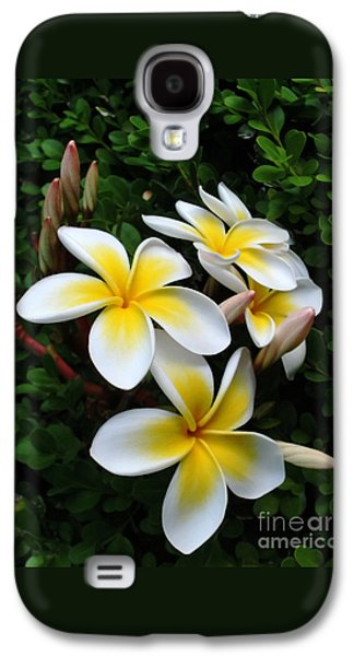 Plumeria In The Sunshine Galaxy S4 Case by Kaye Menner