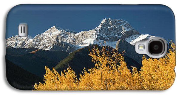 Poplar Trees In Autumn, Mount Lougheed Galaxy S4 Case by Panoramic Images