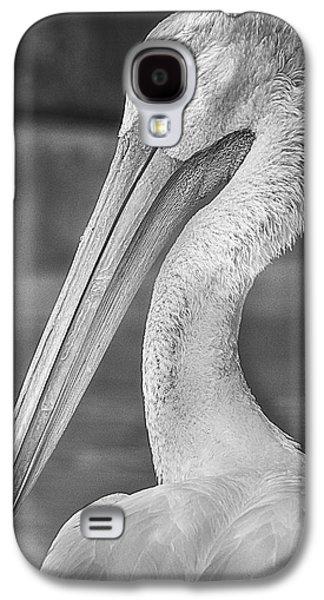 Portrait Of A Pelican Galaxy S4 Case by Jon Woodhams