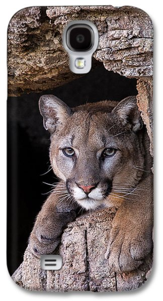 Portrait Of A Watcher Galaxy S4 Case by Beverly Parks