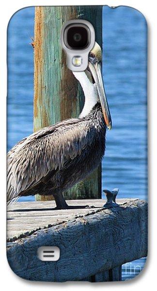 Pelican Galaxy S4 Case - Posing Pelican by Carol Groenen