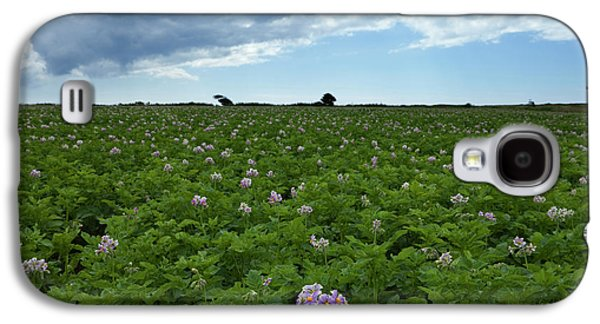 Potatoe Field At Ardmore, County Galaxy S4 Case by Panoramic Images