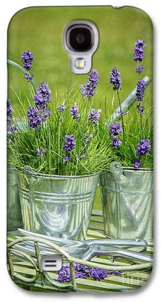 Pots Of Lavender Galaxy S4 Case by Amanda Elwell