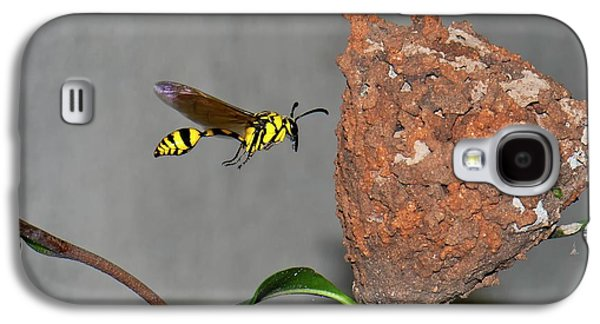 Potter Wasp With Nest Galaxy S4 Case