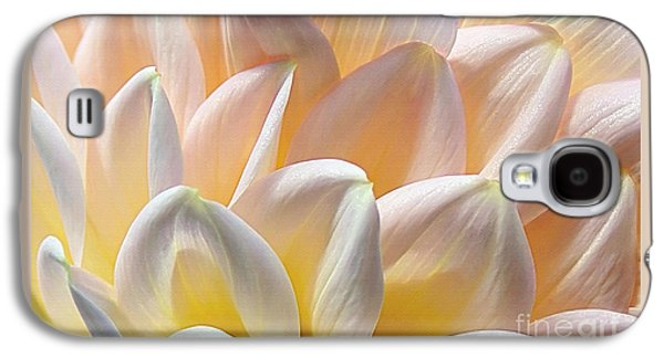 Pretty Pastel Petal Patterns Galaxy S4 Case