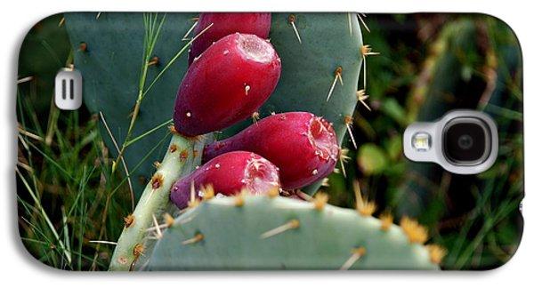 Prickly Pear Cactus Galaxy S4 Case