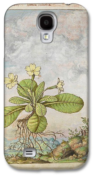 Primrose (primula Vulgaris) Galaxy S4 Case by British Library