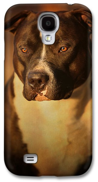 Bull Galaxy S4 Case - Proud Pit Bull by Larry Marshall