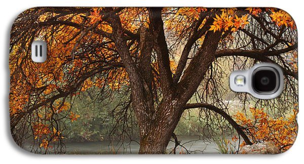 Provo Autumn #1 Galaxy S4 Case