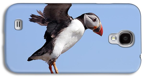 Puffin In Flight Galaxy S4 Case